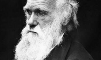 Charles Darwin og arvelighet