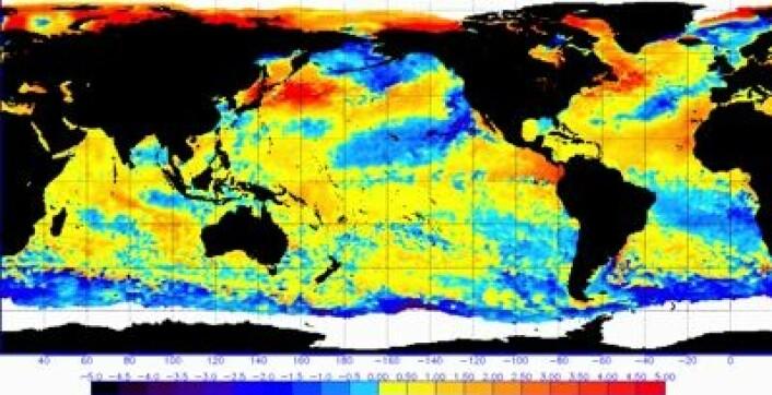 Global havoverflatetemperatur (avvik fra normalen) målt fra satellitt denne uken. (Foto: (NOAA))