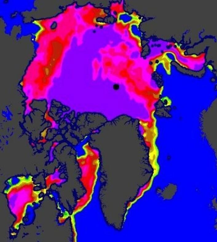 Sjøisen i Arktis, slik EUMETSAT tolker satellittdataene. (Foto: (EUMETSAT osisaf.met.no))