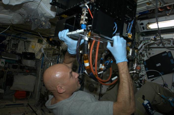 ESAs Astronaut Luca Parmitano installerer et eksperiment ombord på romstasjonen. (Foto: NASA/ESA)