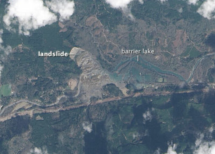 Bilde tatt fra satellitten Landsat-8 over skredområdet ved Oso, Washington 23. mars. (Foto: (NASA Earth Observatory))