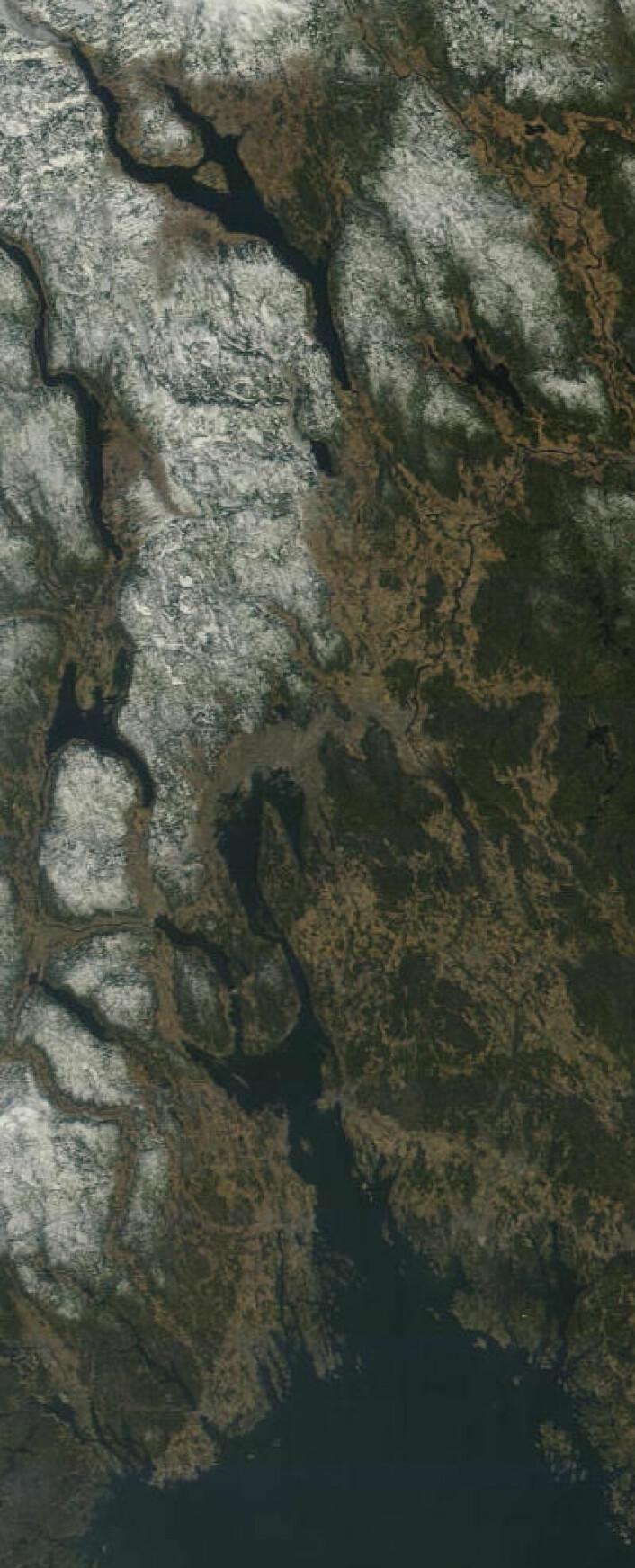 Oslo-området i vårsol, sett fra NASAs satellitt Terra fredag 28. mars. (Foto: (NASA Terra MODIS))