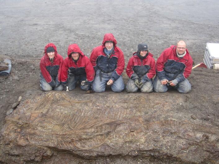 I 2009 fant vi den mest komplette fiskeøglen fra Svalbard som har fått navnet Cryopterygius kristiansenae. Jeg er nummer to fra høyre. (Foto: Patrick Druckenmiller)