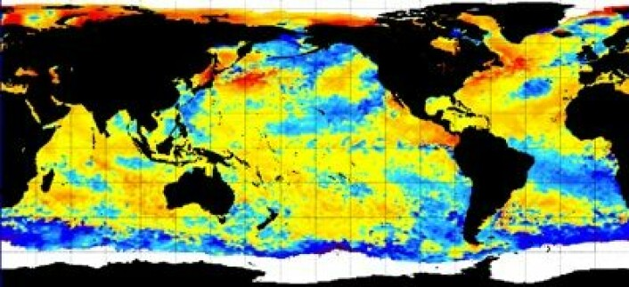 Satellittmålt temperatur (avvik fra normalen) i havoverflaten denne uken. (Foto: (NOAA))