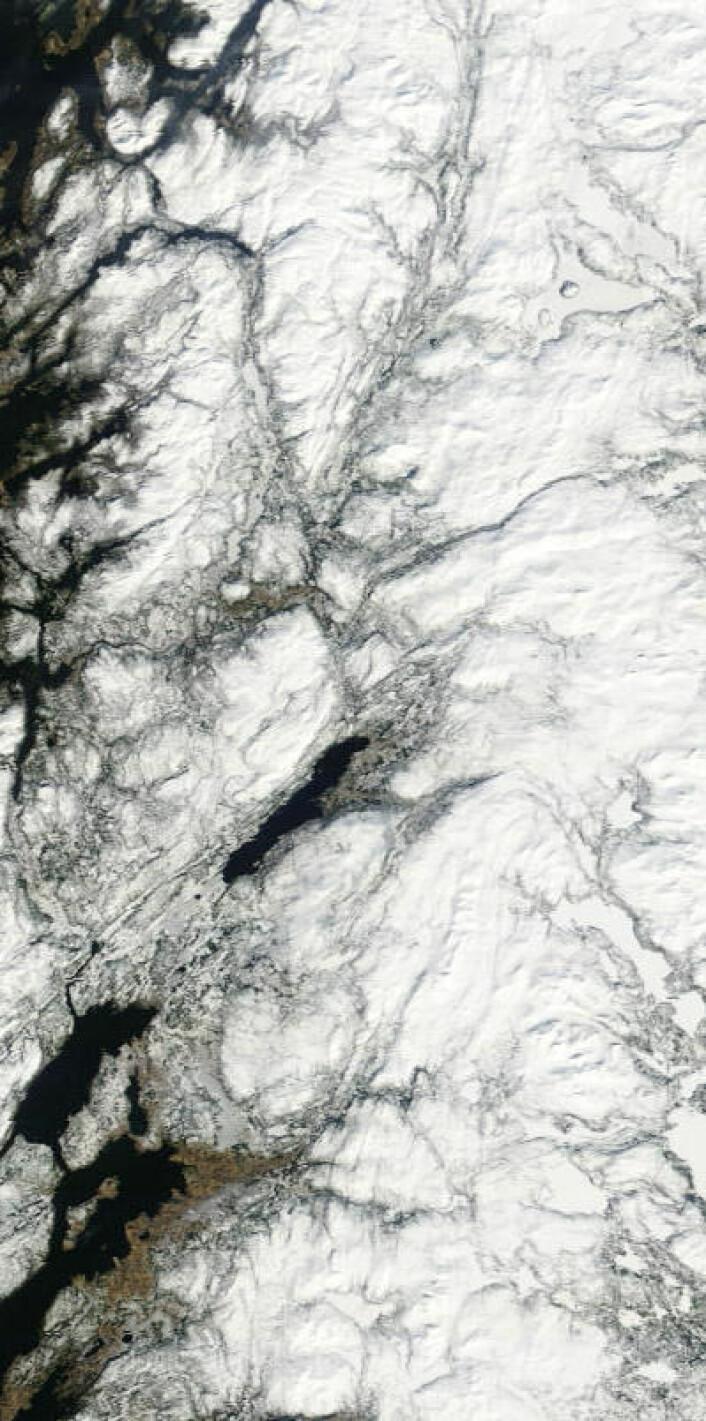 Indre strøk av Trøndelag sett fra NASAs satellitt Terra fredag 4. april 2014. (Foto: (NASA Terra MODIS))