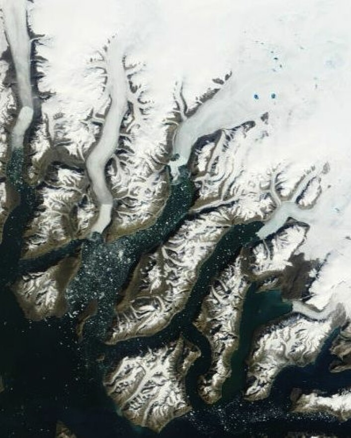 Noen få smeltesjøer kan ses oppe på breen 2. juli, men det går ganske tregt på Grønland denne sommeren. (Foto: (NASA Aqua MODIS))
