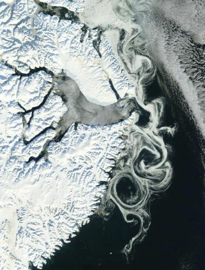 Drivisen kan anta kunstneriske former. Her sett utenfor Scoresby Sund på Grønland 18. oktober fra NASAs satellitt Terra. (Foto: (NASA Terra MODIS))