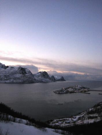 Husøya på Senja i november 2006 (Foto: Gunnar Hrafn Hrafnbjargarson)