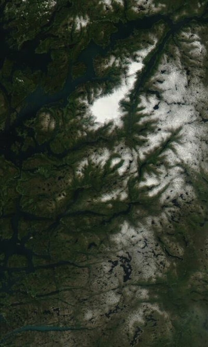 Fine farger både i Hardanger og i Lysefjorden i Rogaland da NASAs satellitt Aqua passerte 8. juli. (Foto: (NASA Aqua MODIS))