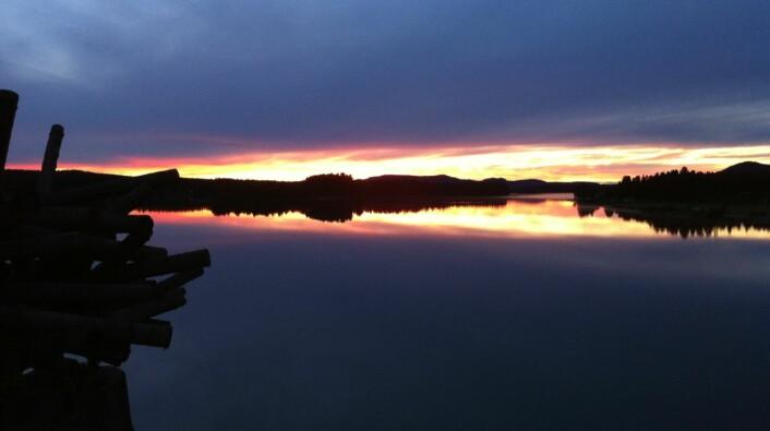 Nordhimmelen over Åsele/Sjeltie ved solnedgang i midten av august. (Foto: Øystein A. Vangsnes)