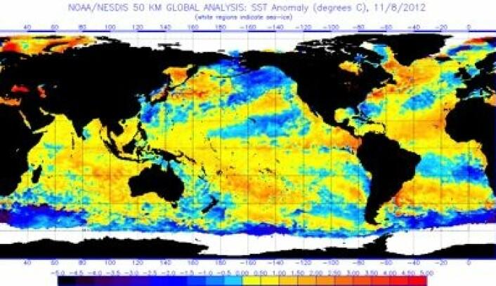Satellittmålt temperatur i havoverflaten 8. november. Temmelig varmt, globalt sett. (Foto: (NOAA))