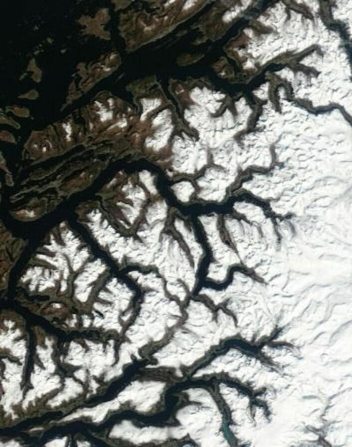 Våren er en fin tid, også for satellitter. Her er Nordvestlandet sett fra Terra 23. april. (Foto: (NASA Terra MODIS))