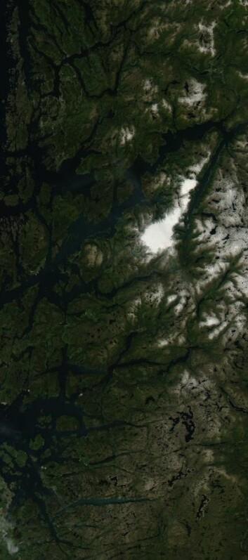 Folgefonna, og mye annen fin natur, sett fra NASA-satellitt 22. juli. (Foto: (NASA MODIS))