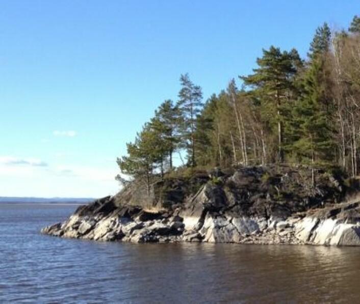 Lav vannstand i Øyeren 15. april 2014. (Foto: T. Wahl)