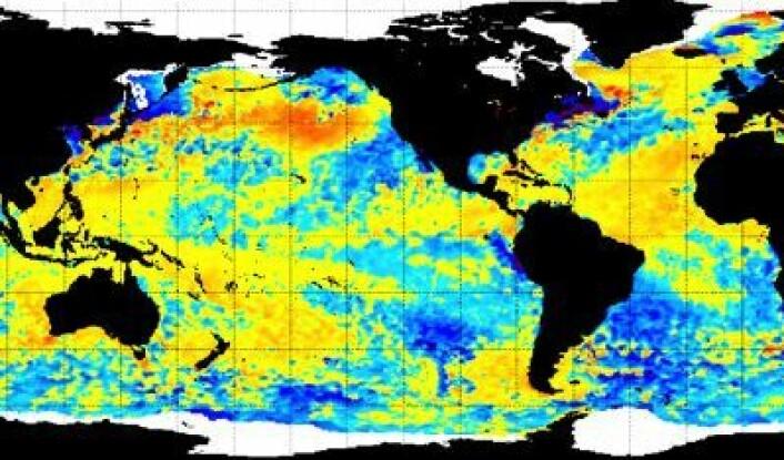 Ukens havtemperatur, målt fra satellitt. Ser ut til at det er oppvelling av kaldt vann utenfor kysten av Peru nå ... (Foto: (NOAA))