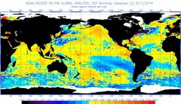 Temperatur-avvik i havoverflaten 1. mai 2014. (Foto: (NOAA))