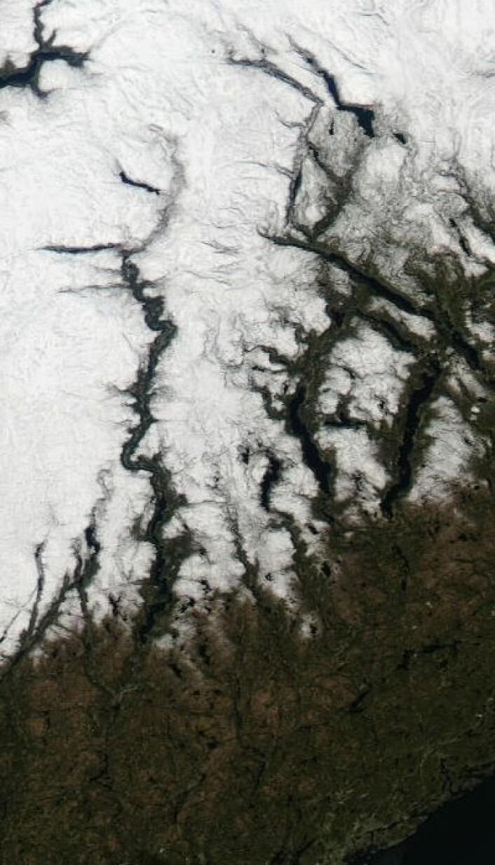 Telemarksvassdraget og Setesdalen sett fra satellitt 1. mai. (Foto: (NASA Terra MODIS))