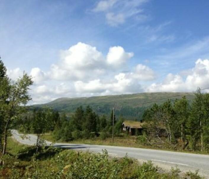 Stemningsbilde fra Hessdalen. Uten mystiske lys-fenomener. (Foto: T. Wahl)