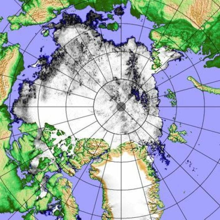 Iskart for Arktis 1. august, basert på tysk analyse av AMSR2-data fra japansk satellitt lest ned på Svalbard. (Foto: (PolarView, Univ Bremen))