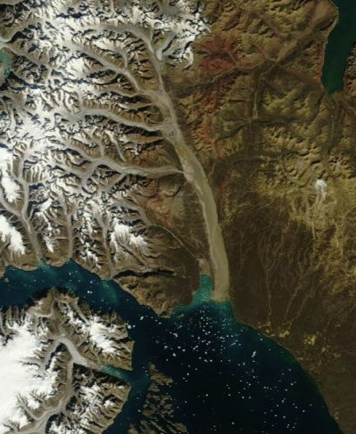 Scoresbysund på Grønland sett fra NASAs satellitt Terra 9. august. (Foto: (NASA Terra MODIS))