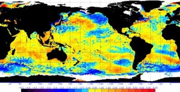 Temperaturavviket fra normalen i havoverflaten 20 desember. Nøytral ENSO, og temmelig varmt i Det indiske hav. (Husk at denne projeksjonen overdriver polområdenes størrelse). (Foto: (NOAA))
