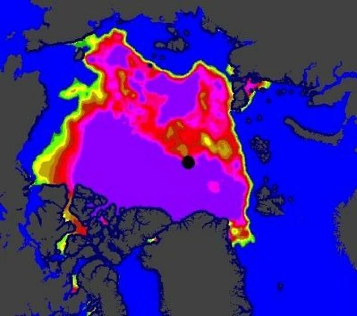Iskart 15. august. Mye åpne råker fra russisk side inn til Nordpolen. Kompakt is på den kanadiske siden. (Foto: (EUMETSAT osisaf.met.no))