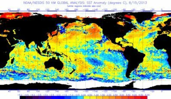 Satellittmålt temperatur (avvik) i havoverflaten, oppdatert 15. august. (Foto: (NOAA))