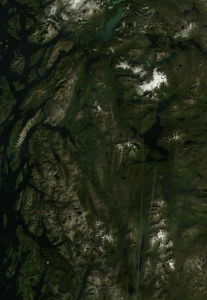 Vakker nordlandsnatur, og flyspor etter norske rutefly, sett fra NASAs satellitt Terra 23. august. (Foto: (NASA Terra MODIS))