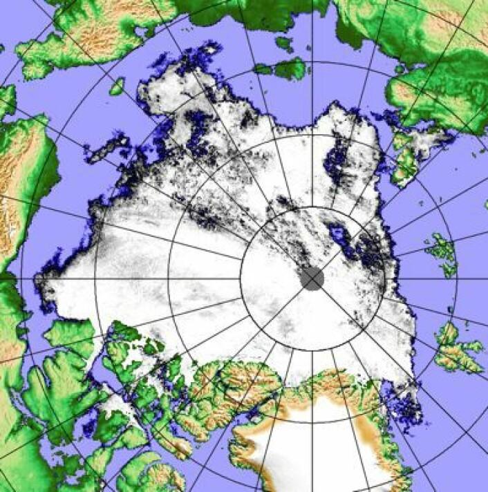 Sjøis-kart laget på basis av målinger fra japansk satellitt 22. august. (Foto: (PolarView / Univ Bremen))