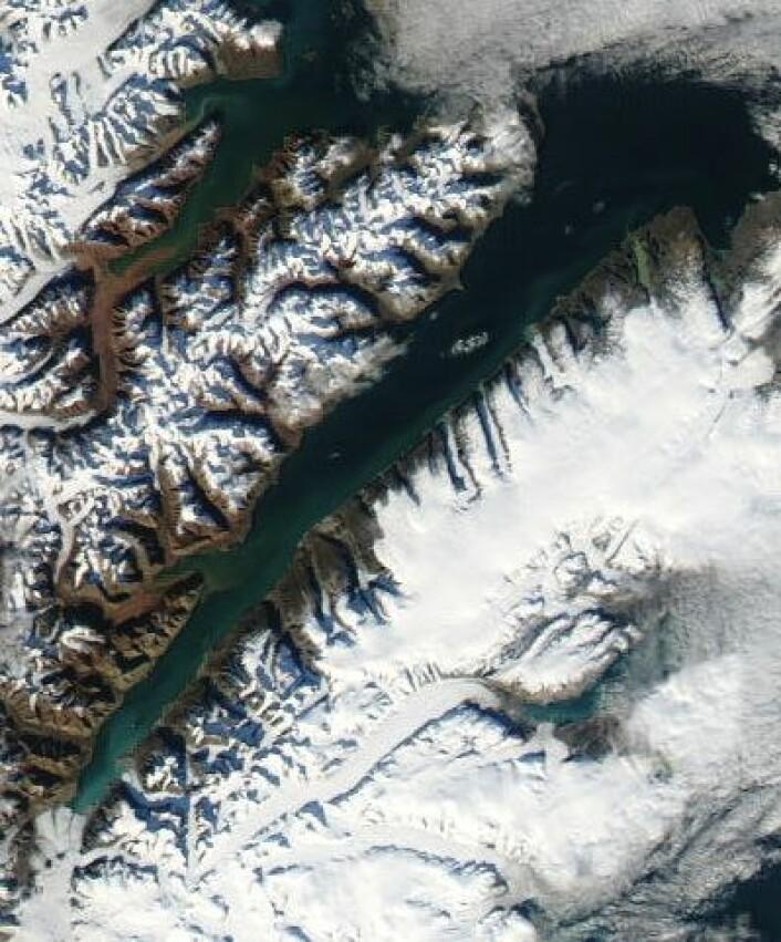 Wijdefjorden på Svalbard, sett fra NASAs satellitt Aqua 3. september. Nord er opp til høyre. (Foto: (NASA Aqua MODIS))