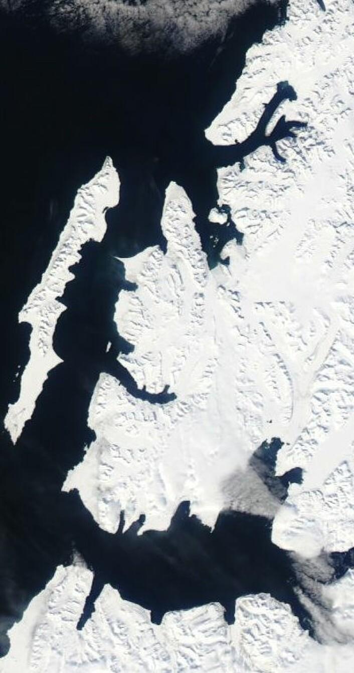 Knallvær på Svalbard formiddagen 17. mai, i følge satellittene. (Foto: (NASA MODIS))