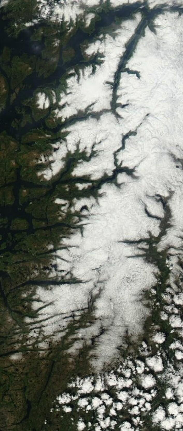 Snøen er på full retrett i Sør-Norge nå. Her er området fra Hardanger og sørover sett fra NASAs satellitt Aqua 25. mai. (Foto: (NASA Aqua MODIS))