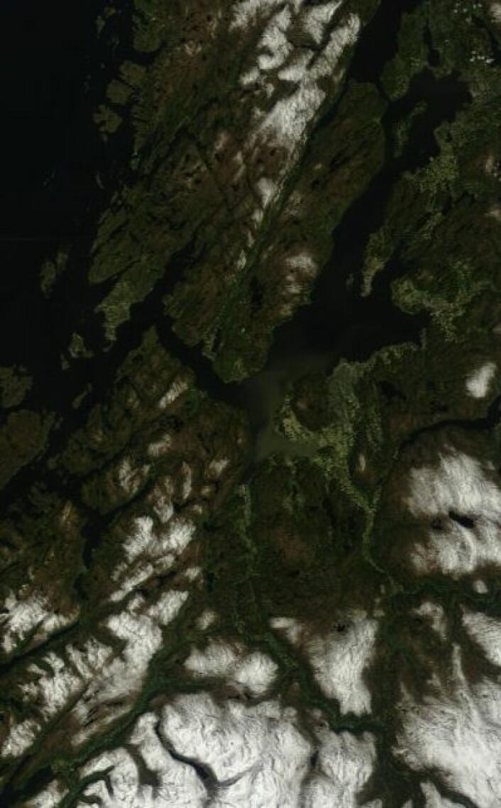 Joda, det kan være fint vær i Trøndelag også. Her sett fra Terra-satellitten lørdag 26. mai. (Foto: (NASA Terra MODIS))