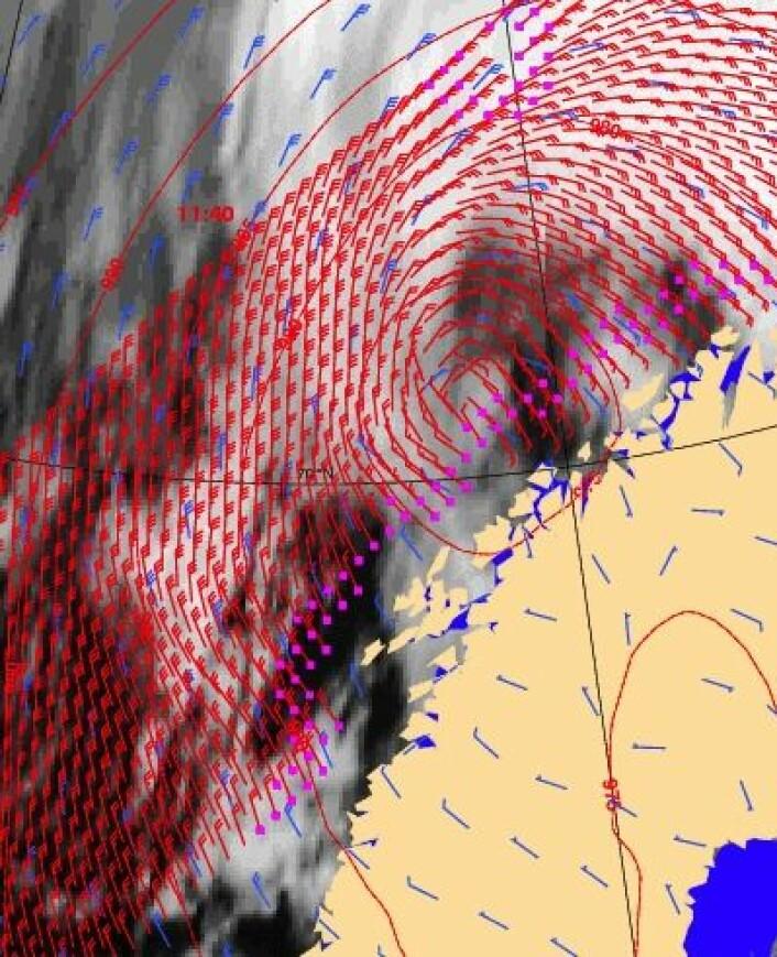 Vindfeltet ved havoverflaten utenfor Nord-Norge 31. januar, målt med scatterometer fra den europeiske værsatellitten Metop-A. (Foto: (EUMETSAT))