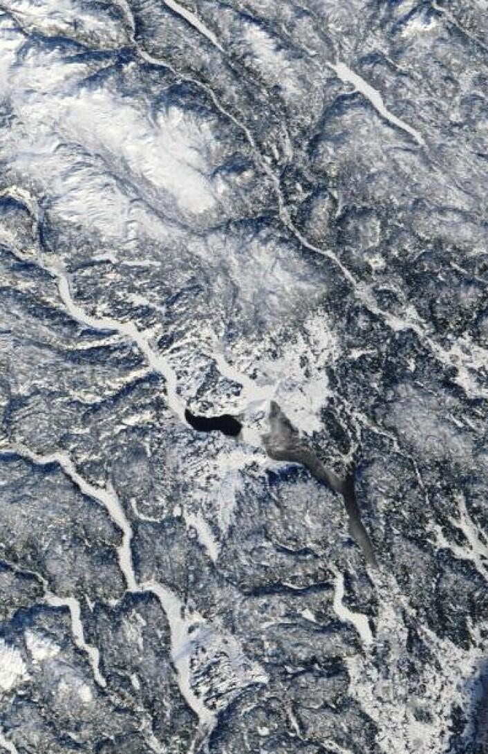 Det ser ikke ut til at isen legger seg ordentlig på Mjøsa denne vinteren. Her sett fra Terra 1. februar. (Foto: (NASA Terra MODIS))