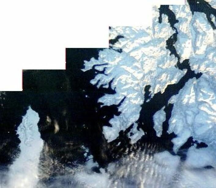 Et tegn på at det går mot vår: Nå har NASA igjen begynt å ta MODIS-bilder over Andøya og Senja. Og snart ser vi nok Tromsø, også. (Foto: (NASA Terra MODIS))