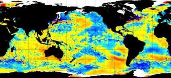Satellittmålt temperatur i havoverflaten (avvik fra normalen) 7. februar. Global temperatur for januar målt ved bakke/hav-nivå vil neppe bli like høy som hva satellittene målte i nedre troposfære. (Foto: (NOAA))