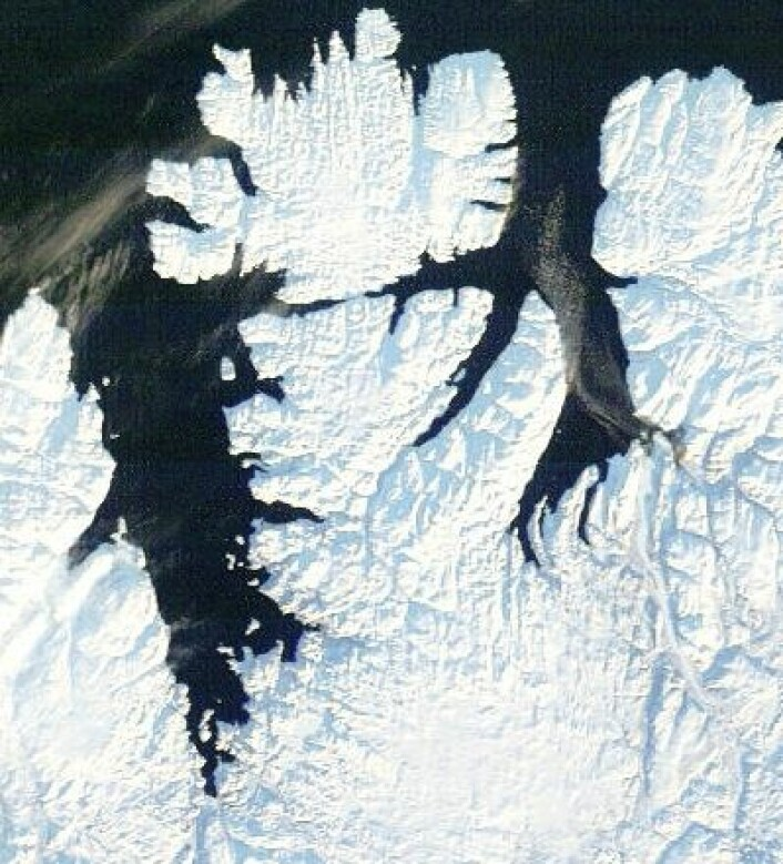 Der var det daglys og skyfritt over Finnmark også. Bildet ble tatt 7. februar. Svalbard er neste stasjon på solas vei nordover. (Foto: (NASA Terra MODIS))