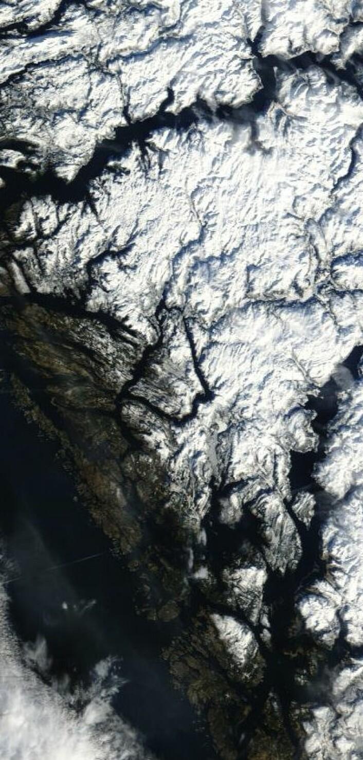 Bergen hadde det fineste vinterværet fredag 22. februar. Her sett fra NASAs satellitt Terra. (Foto: (NASA Terra MODIS))