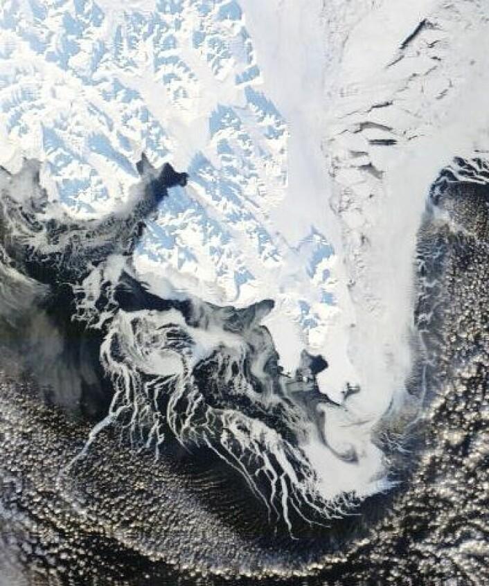 1. mars dukket et solbelyst Svalbard opp i dette bildet fra NASAs satellitt Terra. Det går mot vår! (Foto: (NASA Terra MODIS))