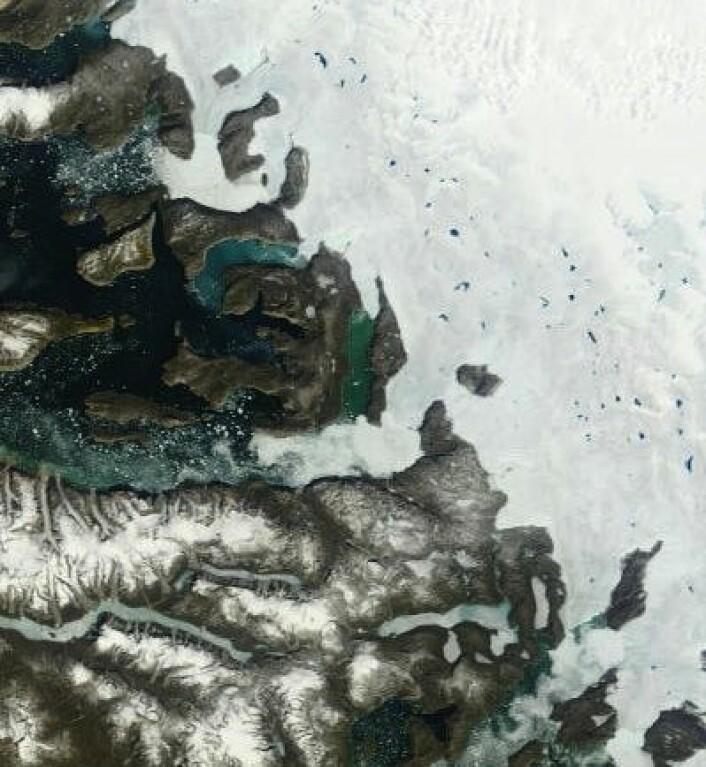 Sommerstemning ved Grønlands vestkyst. (Foto: (NASA Terra MODIS))