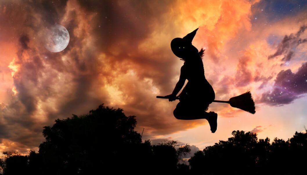 Hekser hekta på sopp