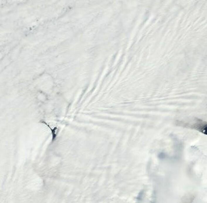 """Overskyet, men et veldig fint """"kjølvann"""" i atmosfæren bak en av øyene ved Franz Josef Land 17. juni. (Foto: (NASA Terra MODIS))"""