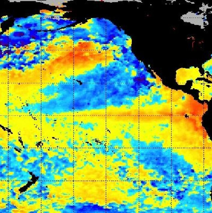 En El Ninjo? Det likner veldig, ja. I hvert fall når vi ser på temperaturen i havoverflaten 21 juni. (Foto: (NOAA))