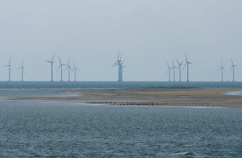 An offshore windmill park on Sjælland, Denmark. Norway is clearly an energy nation, but will offshore wind become its new oil and gas in the distant future?