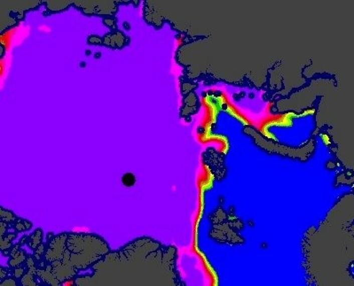 Iskart fra vår del av Arktis 7. november. (Foto: (EUMETSAT osisaf.met.no))