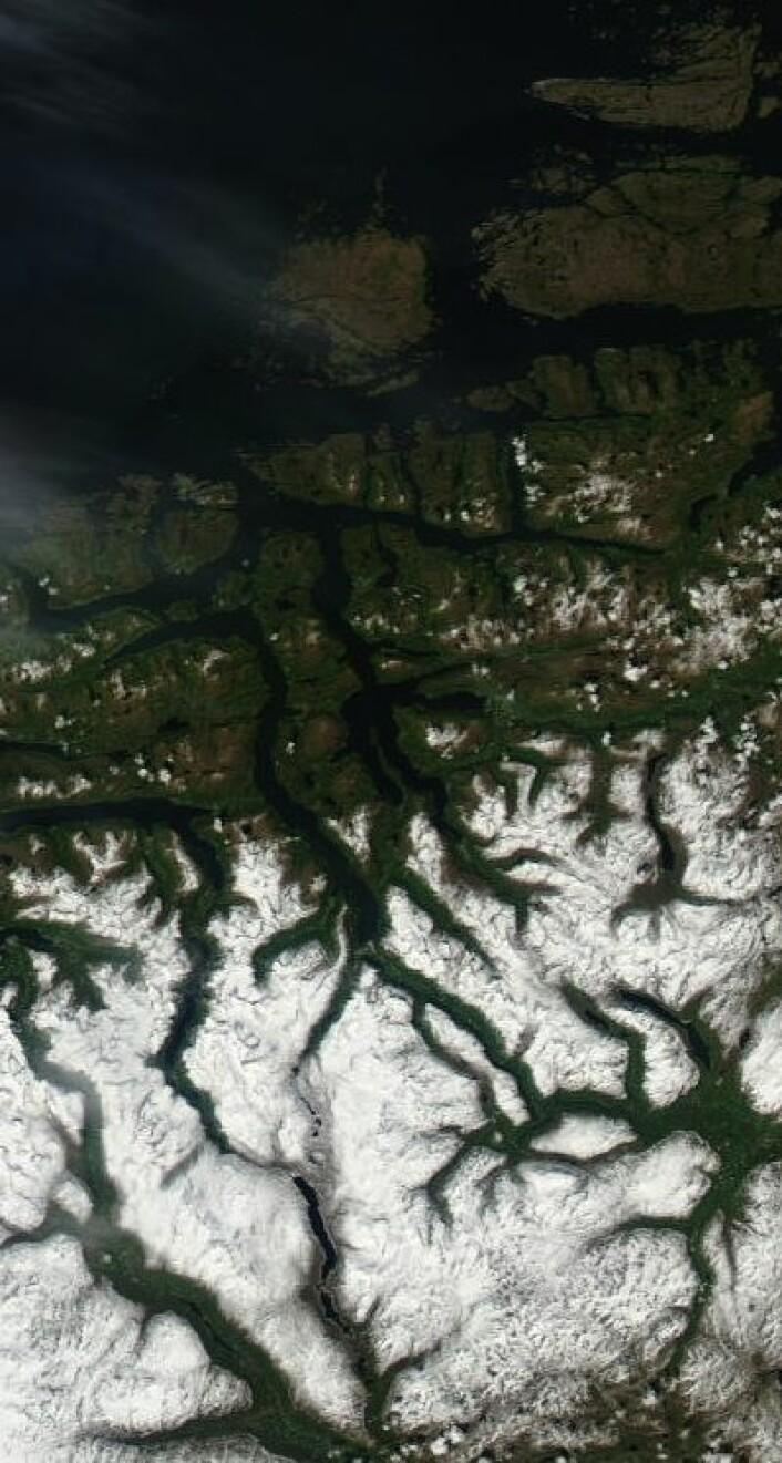 Dype fjorder, grønn skog og snøkledte fjell, sett fra satellitt ved sommersolverv. (Foto: (NASA Aqua MODIS))