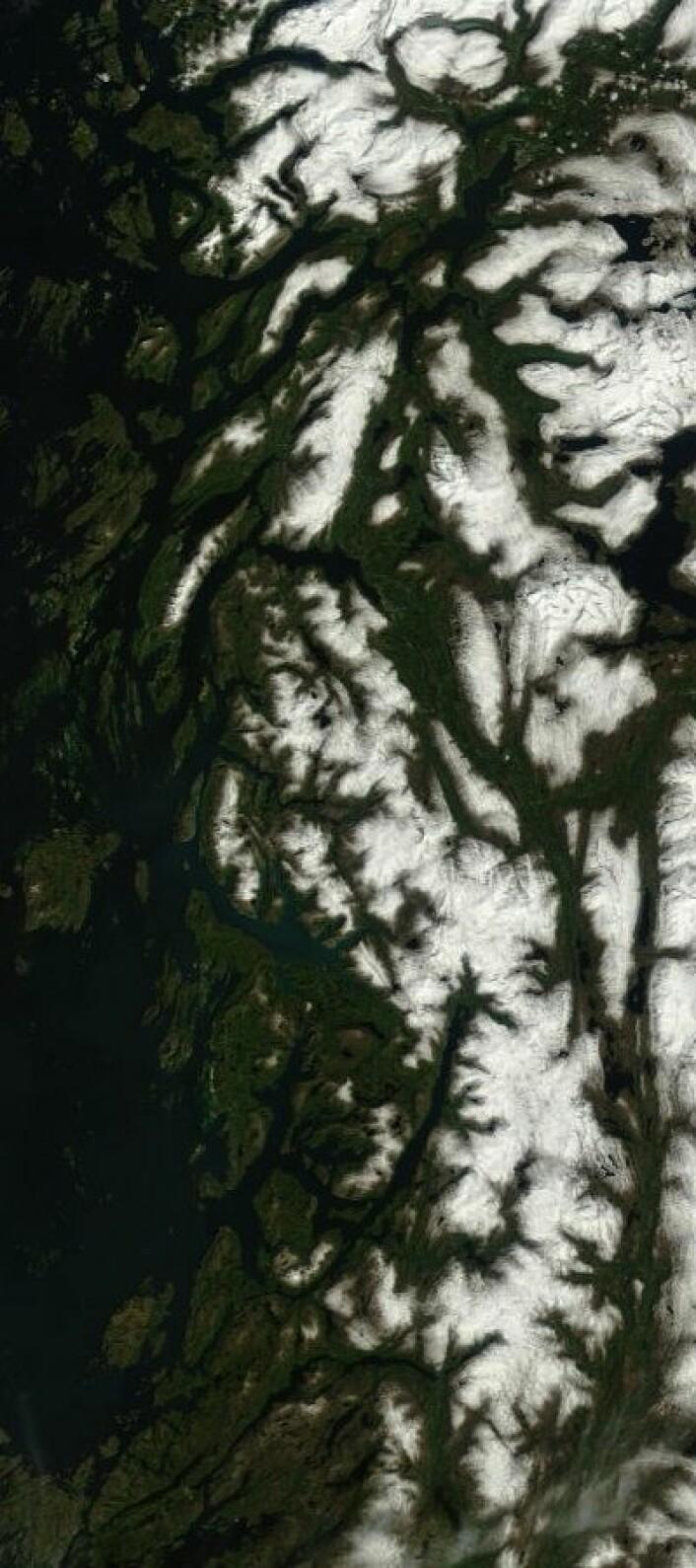 Helgelandskysten sett fra satellitt 22. juni. (Foto: (NASA Terra MODIS))