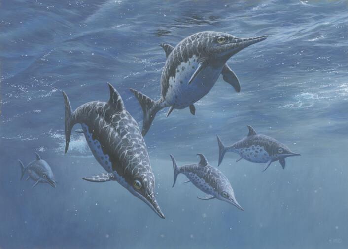Slik tror vi at fiskeøglene så ut i levende live. Rekonstruksjon av Cryopterygius kristiansenae fra barneboka om monsterøglene fra Svalbard (Foto: Esther van Hulsen)