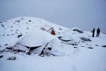 Snø! Foto: (Foto: Lena Kristiansen)